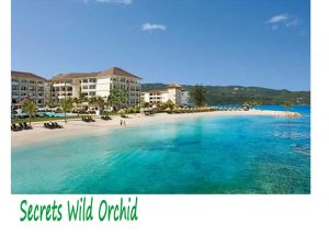 Secrets Wild Orchid Montego Bay Hotel