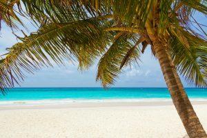 Op het strand van Montego Bay is het heerlijk vertoeven .