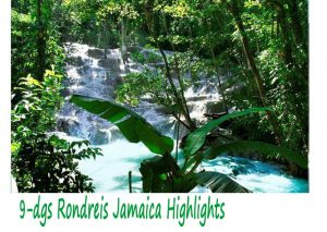 9 Daagse Rondreis Jamaica Highlights
