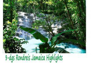 9 Daagse Rondreis Jamaica Highlights